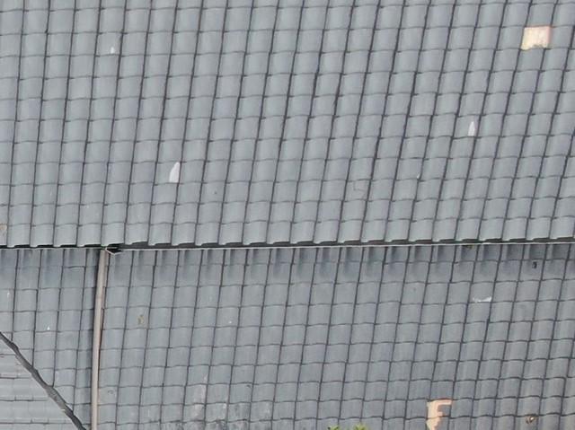 屋根傷み2.jpg