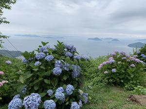紫雲出山1.JPG